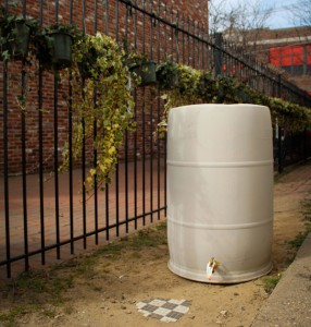 An unpainted rain barrel