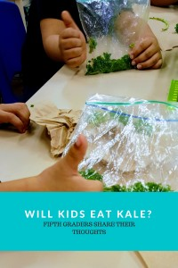 Will Kids eat kale-